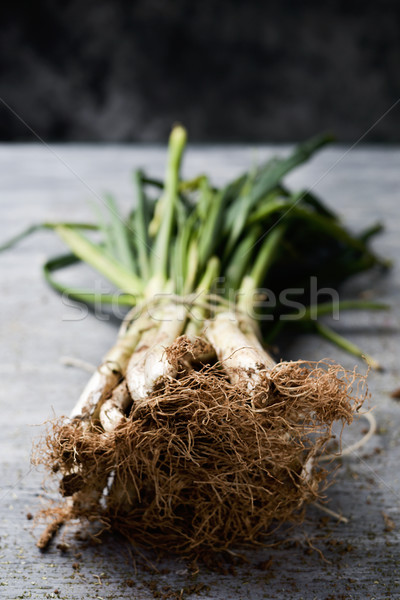 raw calcots, sweet onions typical of Catalonia, Spain Stock photo © nito