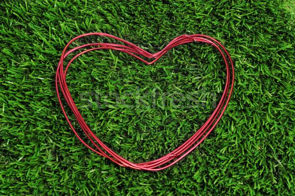 Drót zsemle fű szeretet kert piros Stock fotó © nito