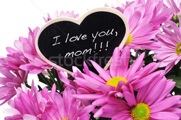I love you, mom Stock photo © nito