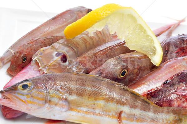 Ruw middellandse zee zee Stockfoto © nito