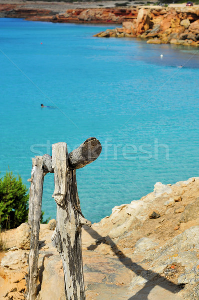 Cala Saona beach in Formentera, Balearic Islands, Spain Stock photo © nito