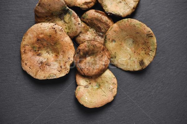 Tipico autunno funghi Spagna greggio rustico Foto d'archivio © nito