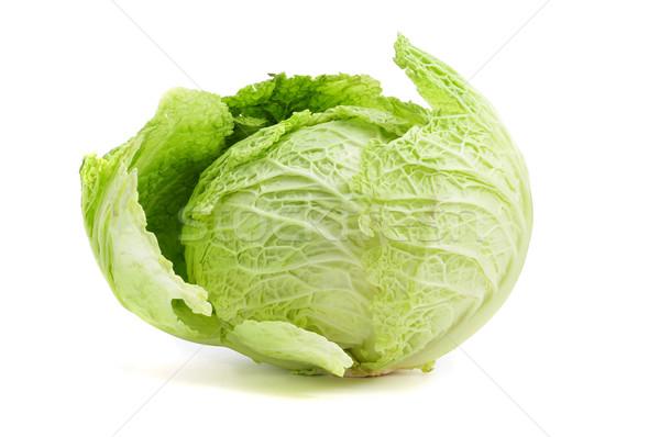cabbage Stock photo © nito