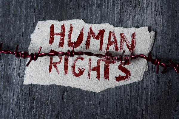 barbed wire and text human rights Stock photo © nito