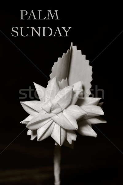 spanish braided palm and text Palm Sunday Stock photo © nito