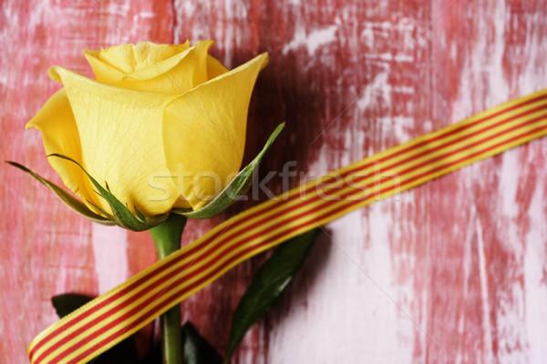 yellow rose and catalan flag Stock photo © nito