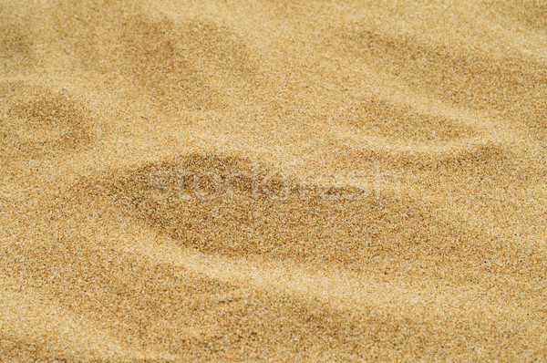 sand of a beach or a desert or a sandpit Stock photo © nito