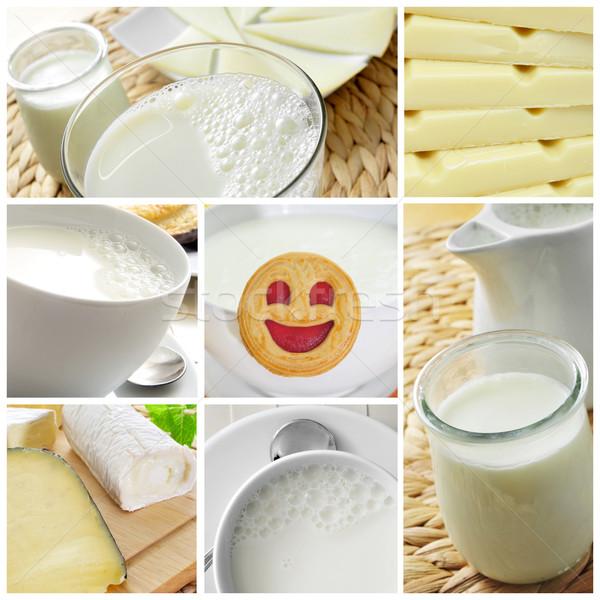 Kolaj farklı resimleri süt yoğurt Stok fotoğraf © nito