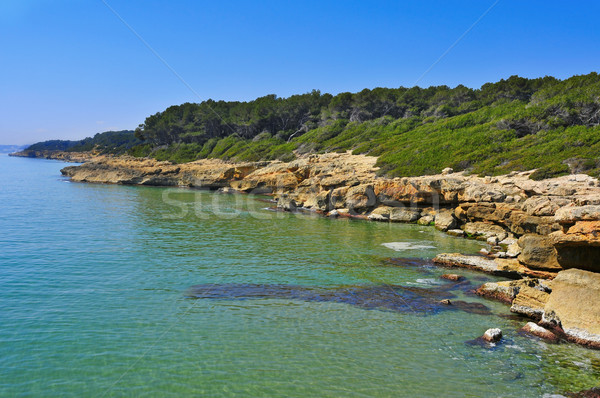 coves in Bosc de la Marquesa, Tarragona, Spain Stock photo © nito