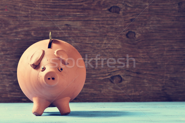 coin in a piggy bank Stock photo © nito