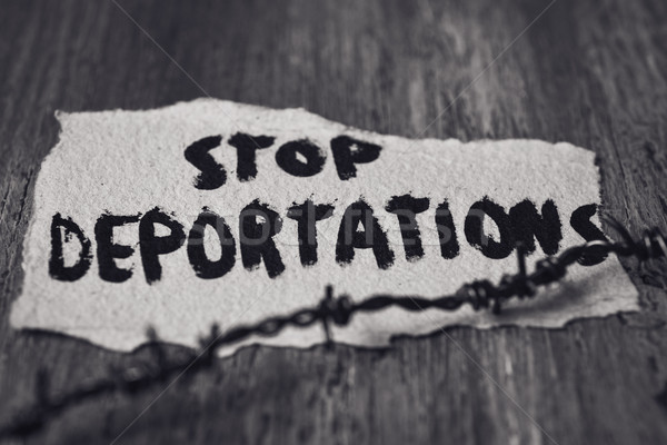 barbed wire and text stop deportations Stock photo © nito