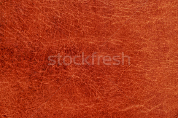 brown leather texture Stock photo © nito