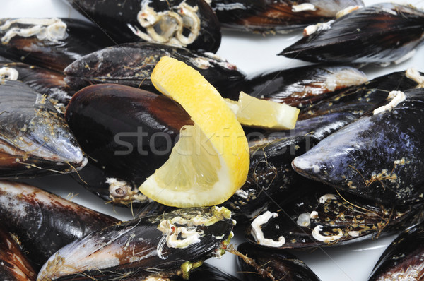 mussels Stock photo © nito