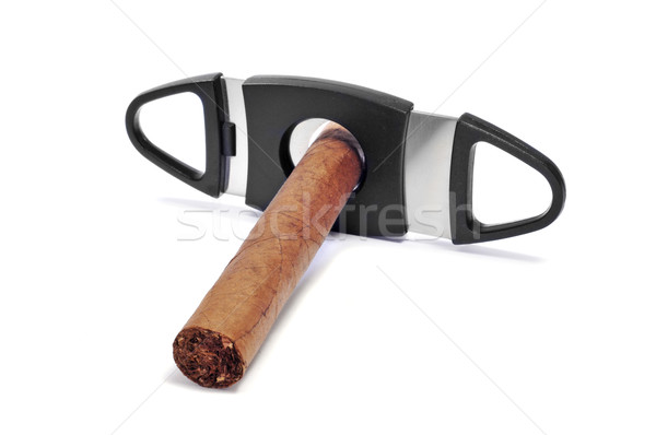 cigar cutter Stock photo © nito
