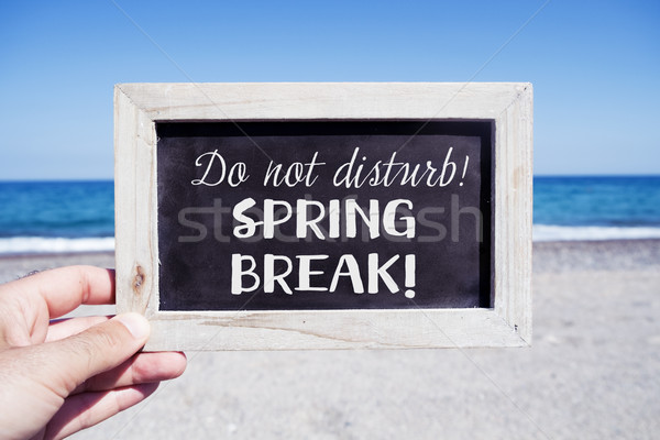 text do not disturb, spring break Stock photo © nito