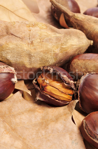 roasted chestnuts and sweet potatoes, typical snack in All Saint Stock photo © nito