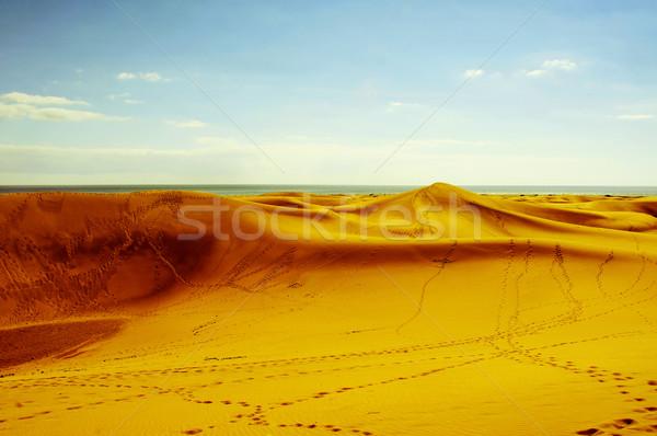 Natural Reserve of Dunes of Maspalomas, in Gran Canaria, Spain,  Stock photo © nito