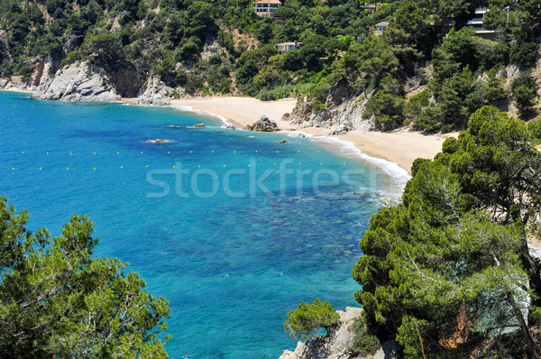 coves of Cala Llorell in Tossa de Mar, Spain Stock photo © nito