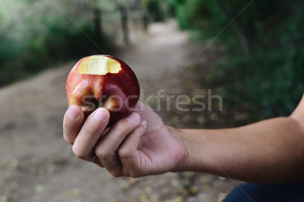 Joven comer manzana roja aire libre primer plano jóvenes Foto stock © nito