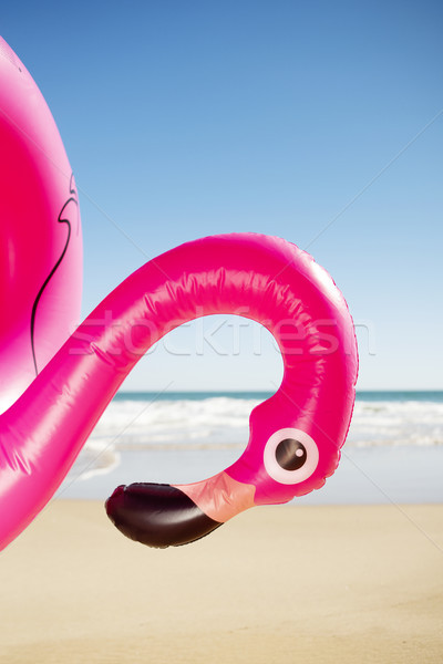 pink flamingo swim ring on the beach Stock photo © nito