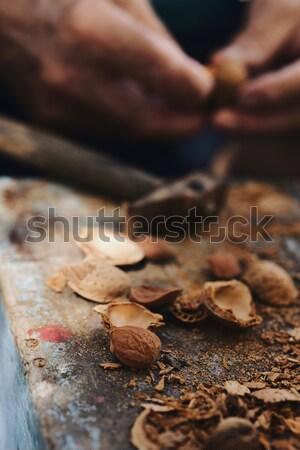 Mandulák kalapács közelkép köteg repedt kagylók Stock fotó © nito