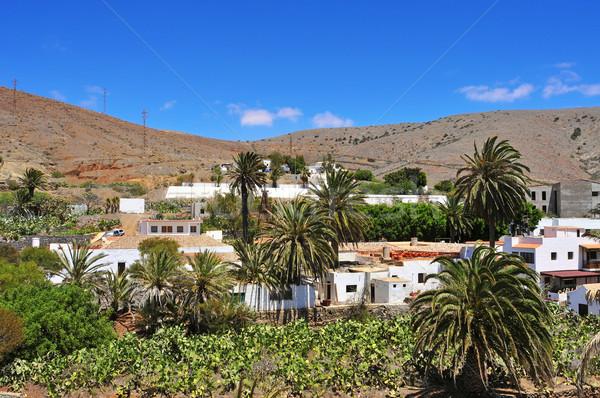 Spanje landschap palm gebouwen Stockfoto © nito