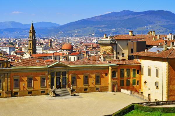 Floransa İtalya ufuk çizgisi şehir arkadan görünüm karşı Stok fotoğraf © nito