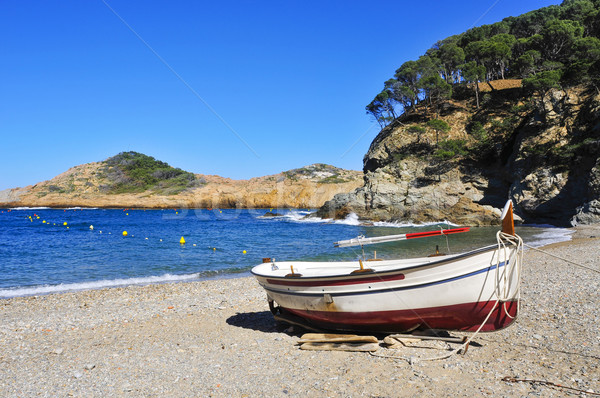 Eski ton balığı plaj İspanya Stok fotoğraf © nito
