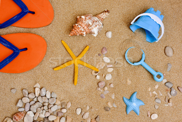summer stuff on the sand of a beach Stock photo © nito