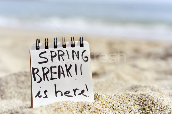 text spring break is here in a notepad Stock photo © nito
