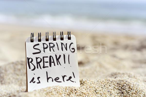 Szöveg tavaszi szünet itt jegyzettömb közelkép írott Stock fotó © nito