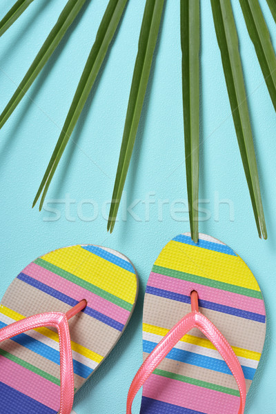 colorful striped-patterned flip-flops Stock photo © nito
