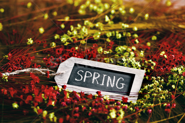 flowers and black label with the word spring Stock photo © nito
