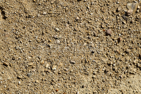 close-up of a sandstone soil Stock photo © nito