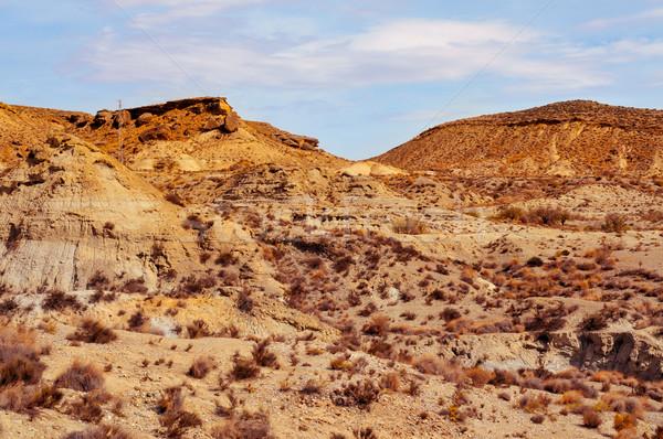 desert of Tabernas, in Almeria, Spain Stock photo © nito