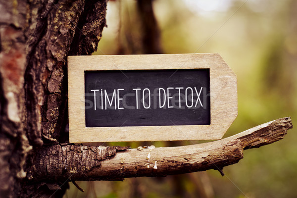 chalkboard with the text time to detox Stock photo © nito