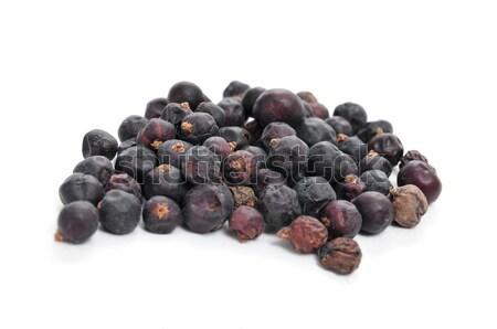 juniper berries Stock photo © nito