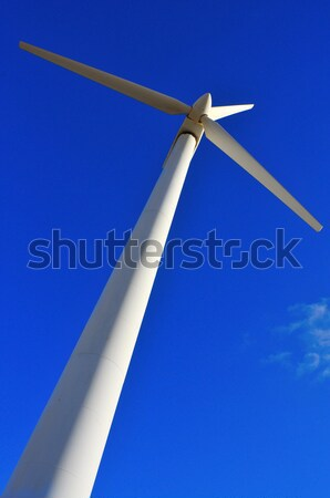 wind turbine Stock photo © nito