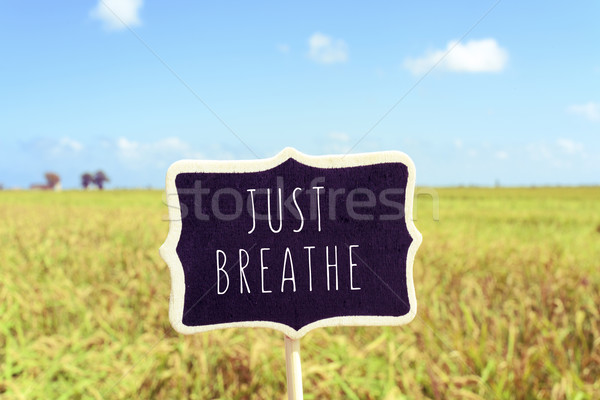 signboard with the text just breathe in a peaceful landscape Stock photo © nito