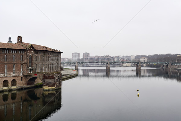 Garonne River in Toulouse, France Stock photo © nito