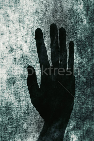 silhouette of an open hand Stock photo © nito
