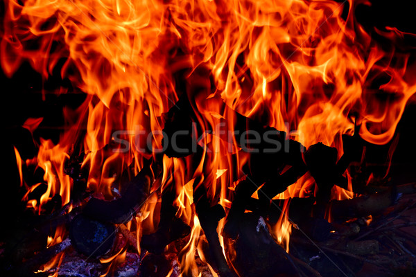fire flames Stock photo © nito