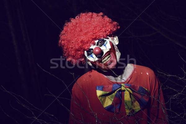 scary evil clown in the woods at night Stock photo © nito