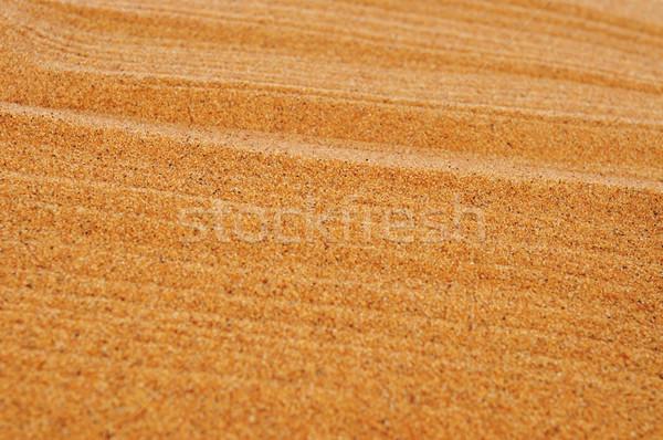 raked sand background Stock photo © nito