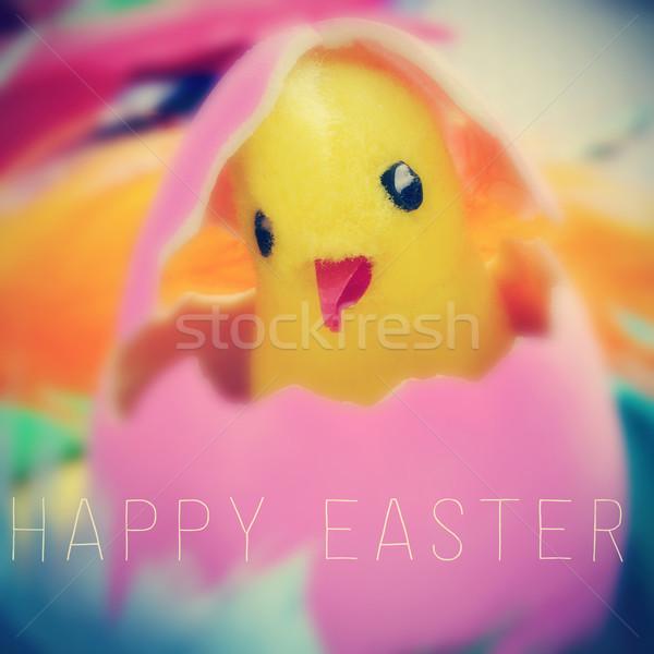 Plüssmaci csirke húsvéti tojás szöveg kellemes húsvétot írott Stock fotó © nito