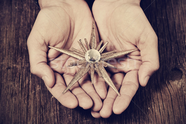christmas star in the hands of a man, filtered Stock photo © nito