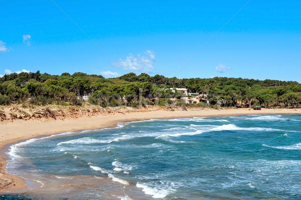 Rec del Moli beach in La Escala, Spain Stock photo © nito