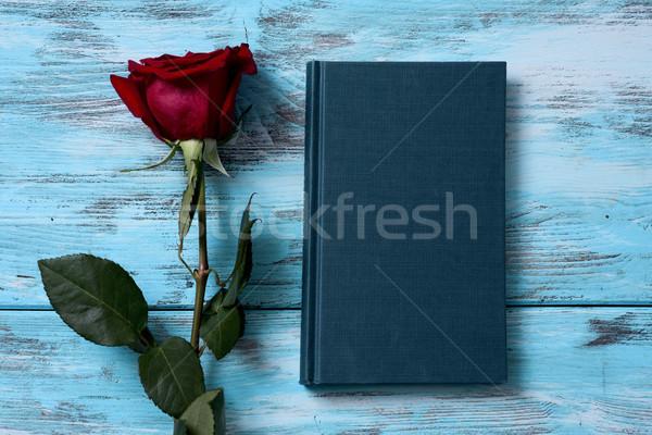 Czerwona róża książki widoku nazwa święty Zdjęcia stock © nito