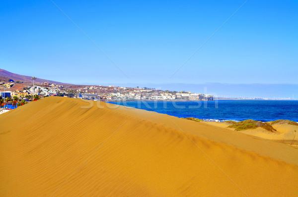 自然 リザーブ スペイン 表示 カナリア諸島 ストックフォト © nito