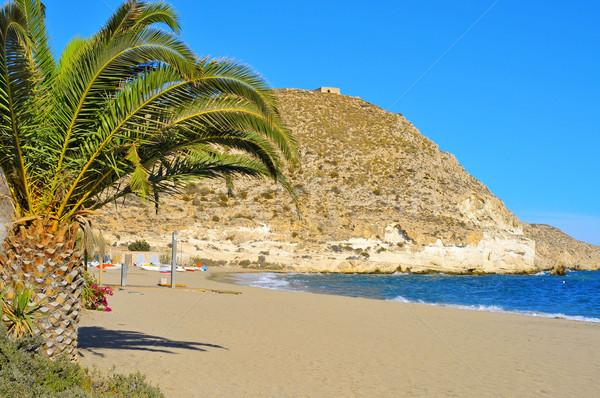 Beach of Agua Amarga in the Cabo de Gata-Nijar Natural Park, in  Stock photo © nito